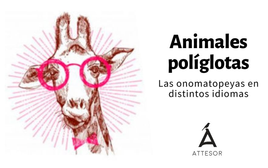 Animales políglotas: las onomatopeyas en distintos idiomas
